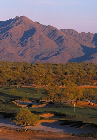 phoenix-travel-Wildfire-Faldo-2
